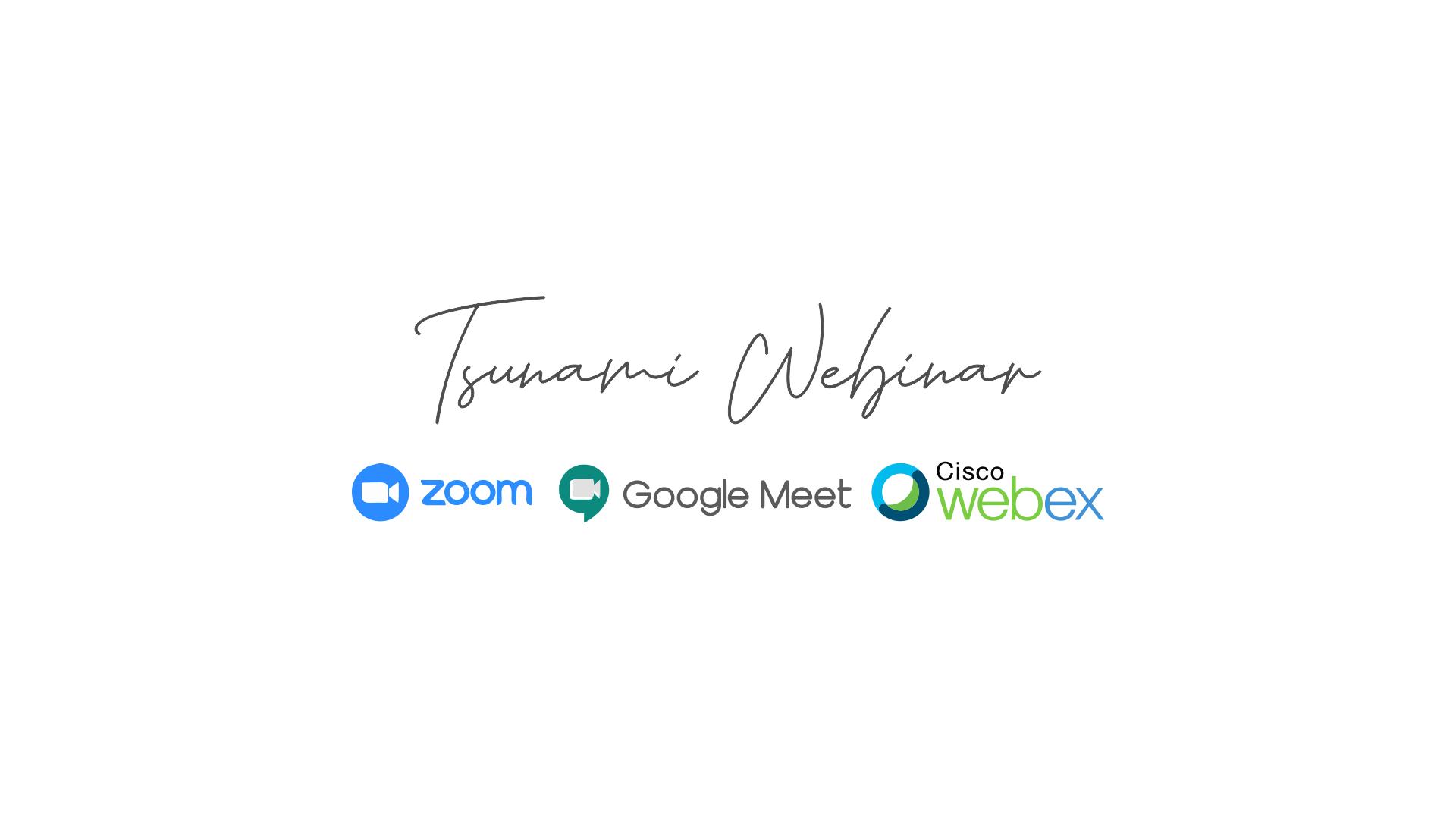 Tsunami Webinar, Video Conference Provider
